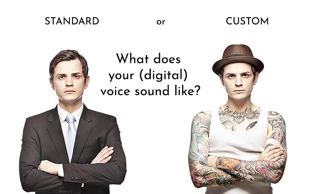 digital custom voices by acapela group